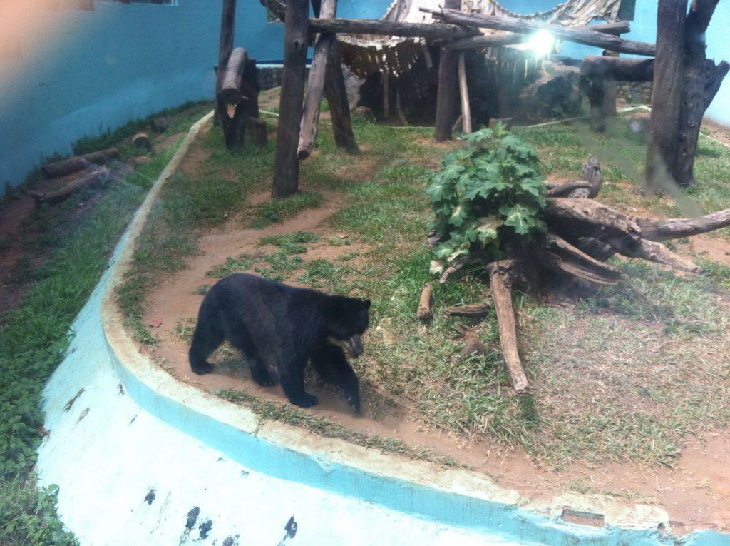 Zoológico de Salvador