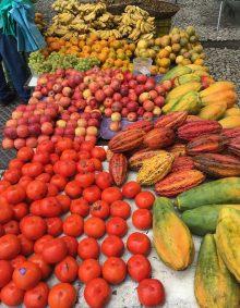 Barracas de frutas - Salvador