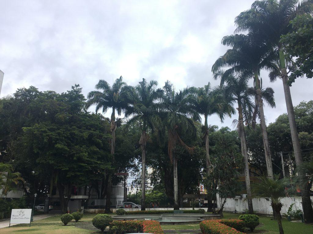 A tranquilidade do Museu Carlos Costa Pinto no Corredor da Vitória