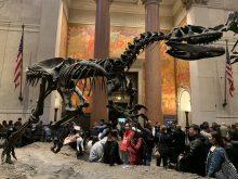 Museu Americano de História Natural